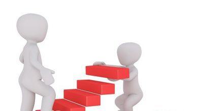 karijera-stepenice