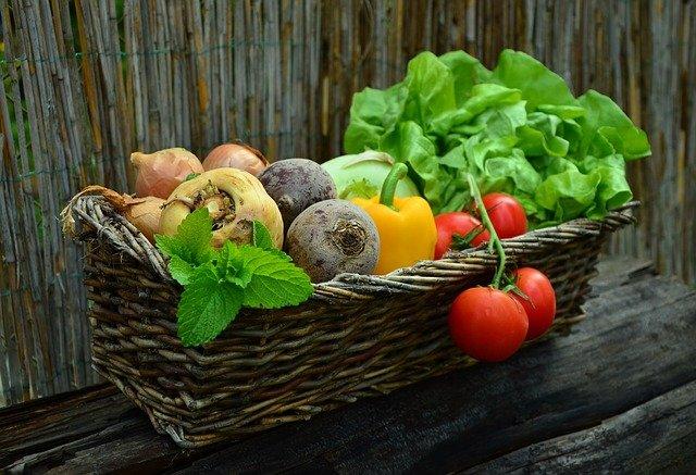 biljke-povrće