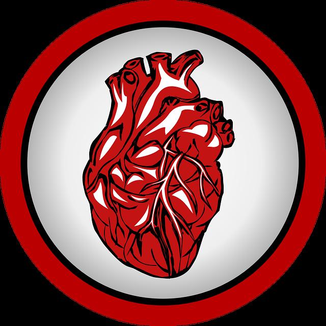 srce-organ